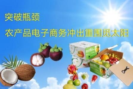 农产品电子商务,如何突破重围觅太阳