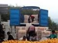 水果运输的主要方式
