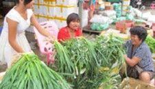 """台风过后 岛外运回千吨蔬菜成""""及时雨"""""""