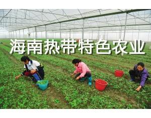 海南热带特色农业