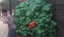 本联合社向辽宁大家庭超市供应水果近10万斤