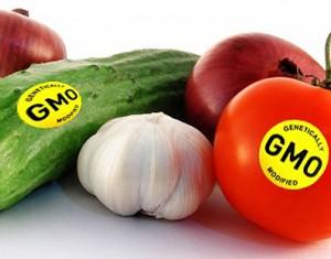 转基因食品之争