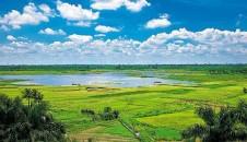 玉龙泉湿地公园