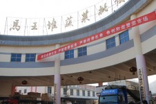 湖南长沙马王堆蔬菜批发市场
