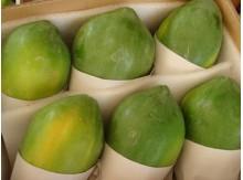 中白木瓜20斤装