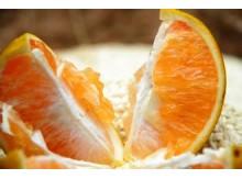福橙9斤装