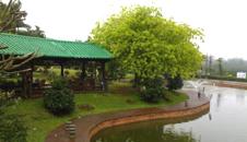 侯臣咖啡文化村(西线高速公